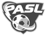 Professional Arena Soccer League
